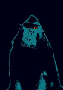 mono-cuerpo-copia